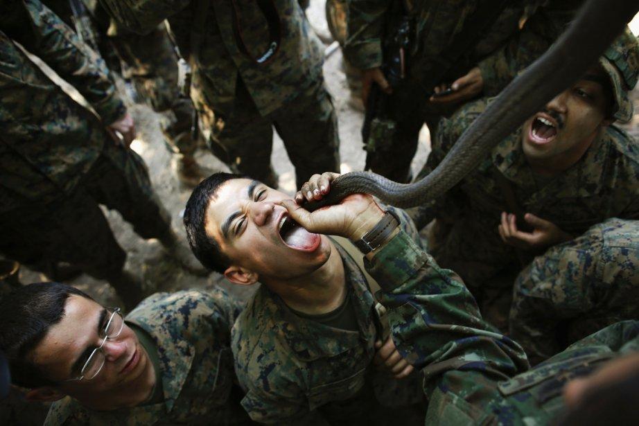 Un marine américain boit le sang d'un cobra pendant un exercice de survie dans la jungle. Quelque 13 000 soldats venus de 7 pays (États-Unis, Japon, Thaïlande, Singapour, Indonésie, Corée du Sud et Malaisie) participent à cette formation de 11 jours donnée en collaboration avec la marine thaïlandaise dans une base militaire de la province de Chon Buri. | 21 février 2013