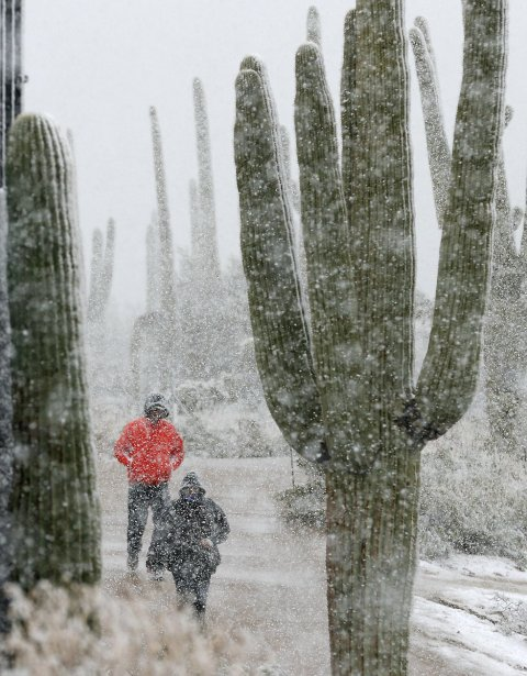 La première ronde du Championnat du monde par trou à Marana, en Arizona, a été stoppée par la neige. Plutôt rare au golf! (20 février) | 21 février 2013