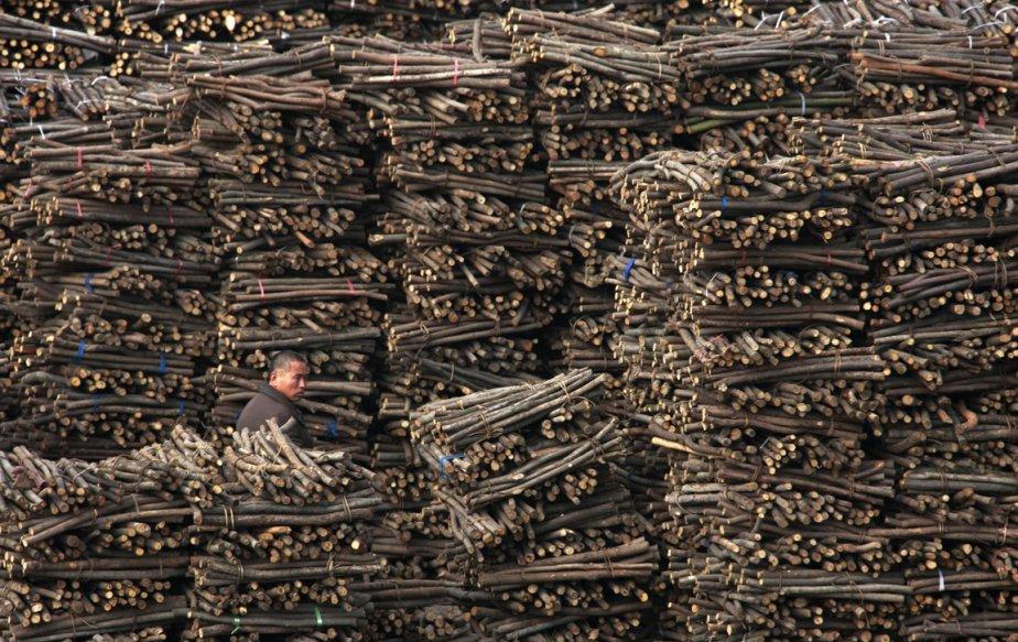 Un ouvrier dans une cour de bois de chauffage à Huaibei, en Chine. | 21 février 2013