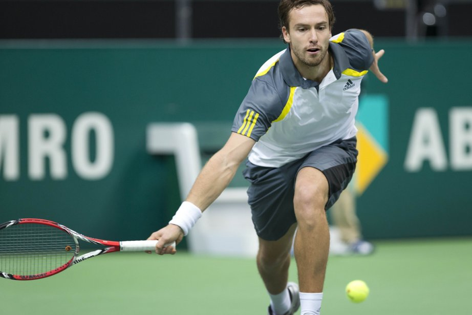 Ernests Gulbis... (PHOTO KOEN SUYK, ARCHIVES AFP)