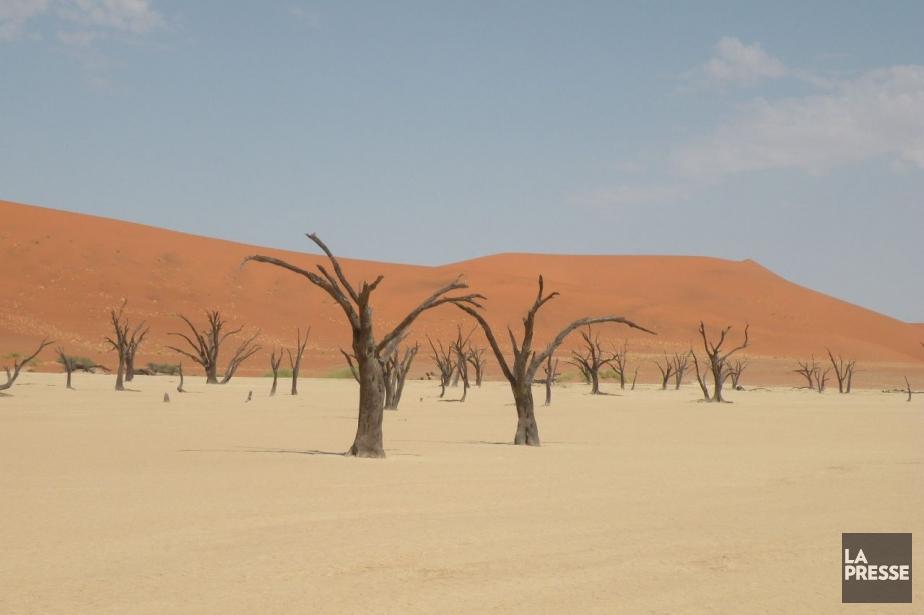 Le désert du Namib.... (Photo archives La Presse)
