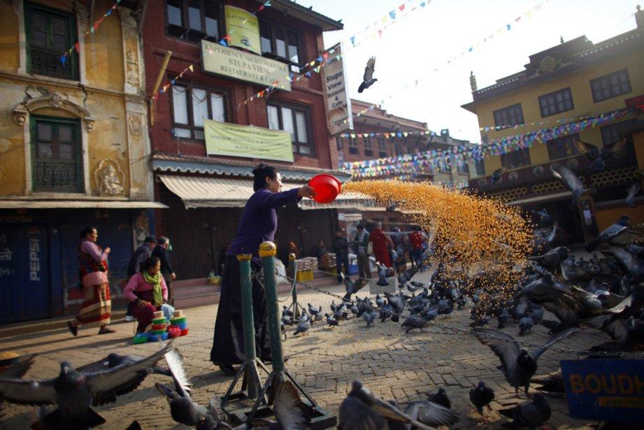 Une femme népalaise bouddhiste nourrit les pigeons près du Stupa... | 2013-03-20 00:00:00.000