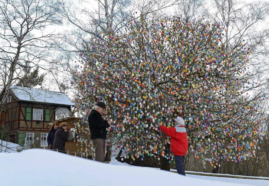Olker Kraft et sa femme Christa décorent un arbre avec près de 10 000 oeufs de Pâques dans leur jardin de Saalfeld, au centre de l'Allemagne. | 20 mars 2013
