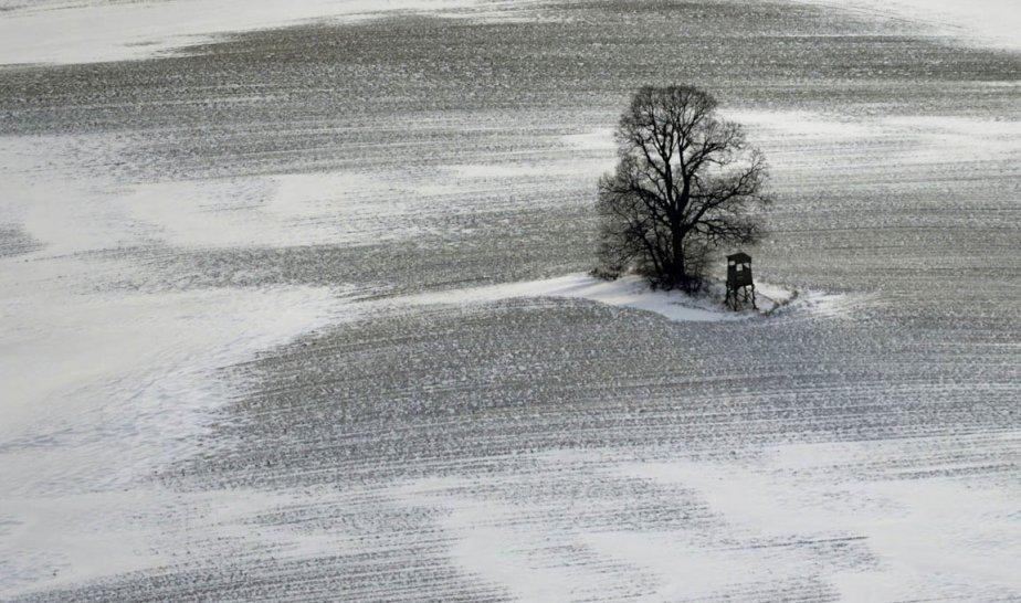 Un champ glacé près de Acs en Bulgarie. | 22 mars 2013