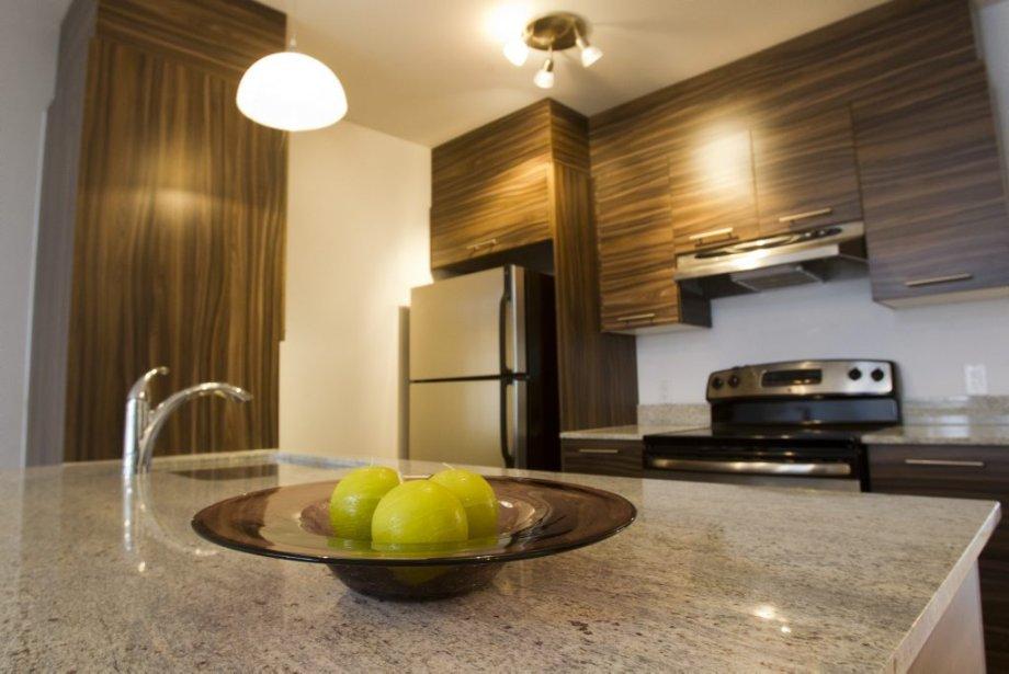 Dans la cuisine, l'évier simple est installé sous le plan de travail en granit. Les armoires sont en mélamine évoquant un grain de bois. | 27 mars 2013