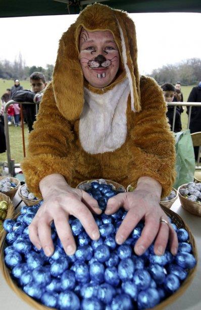 Un lapin de Pâques couve ses oeufs en Belgique. | 31 mars 2013