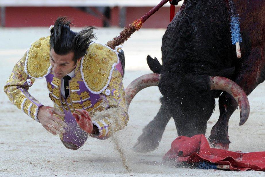 Le Matador David Mora chute lors de la féria printanière à Arles en France | 5 avril 2013