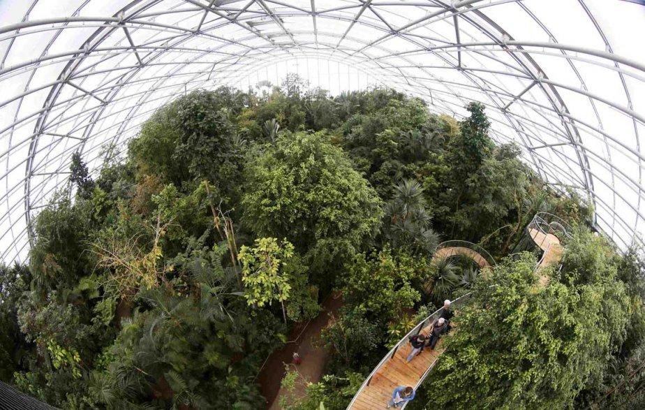 L'arboretum Masoala du zoo de Zurich | 8 avril 2013