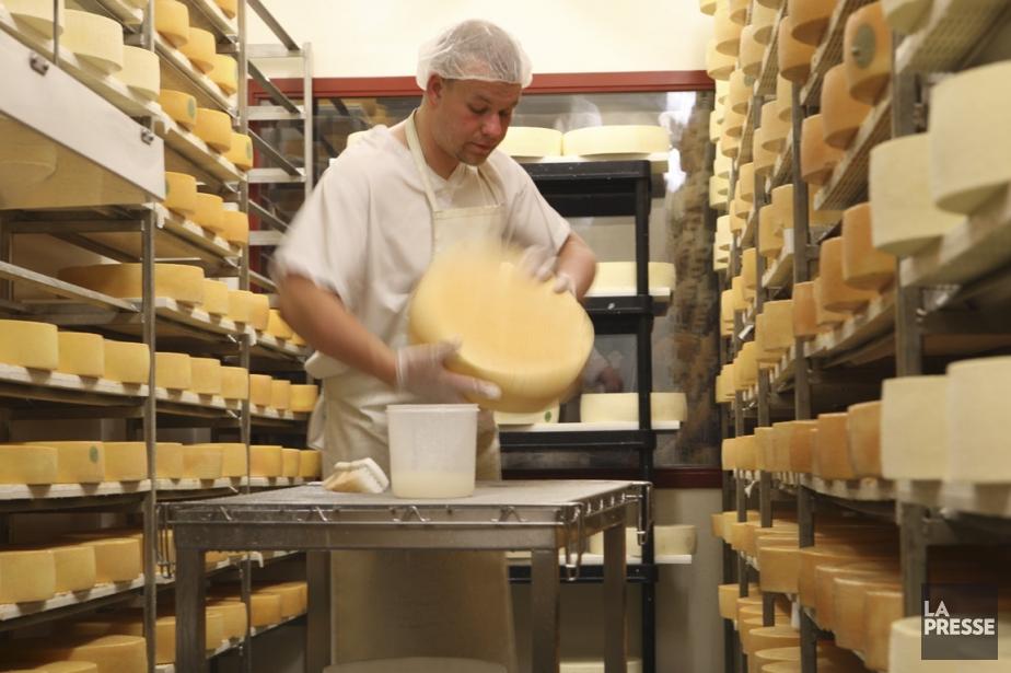 La laiterie Charlevoix, où est fabriqué le fromage 1608, notamment. Un employé frotte les meules dans une salle réfrigérée où sont conservés les fromages. | 10 avril 2013