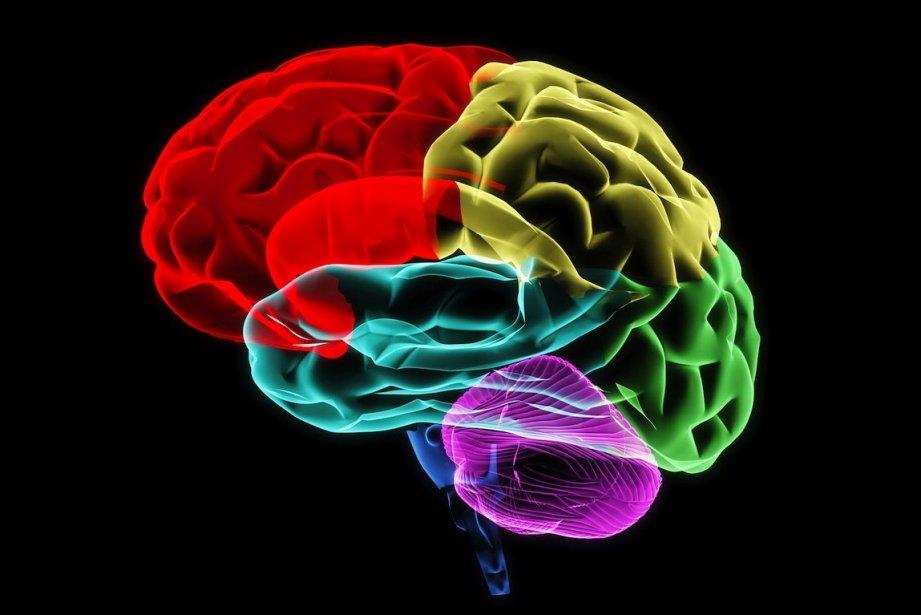Même les non-amputés peuvent éprouver la sensationd'avoir un... (Photo Neo Edmund/Shutterstock.com)
