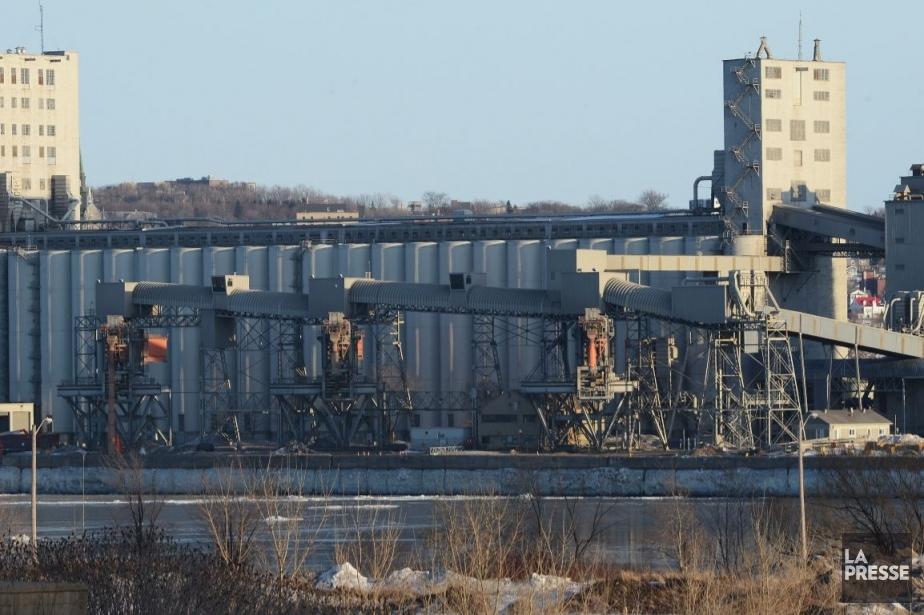 Le port de Québec... (PHOTO PATRICE LAROCHE, LE SOLEIL)