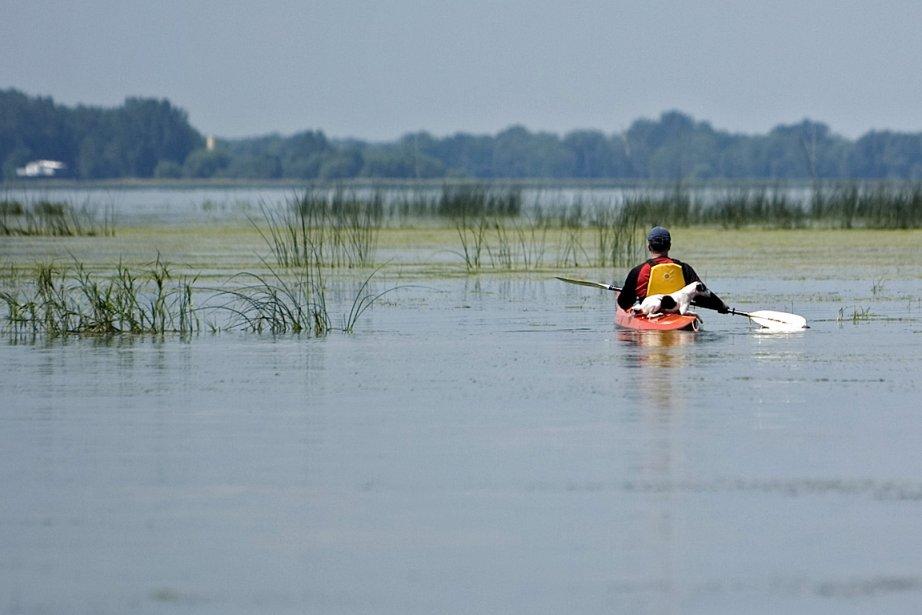 Un kayakiste pagaye sur la rivière Yamaska, près... (Photo: Ivanoh Demers, archives La Presse)