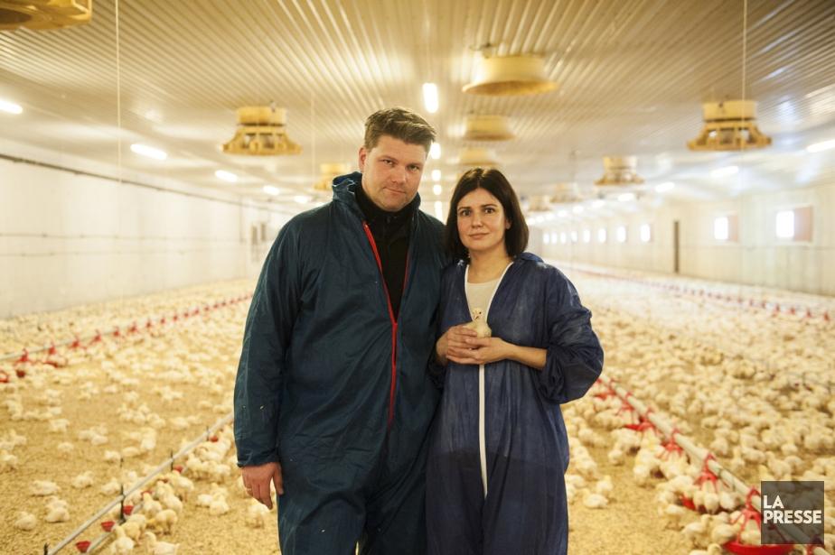 Åsa et Ola Göransson élèvent 300 000 poulets... (Photo : Felix Swensson, collaboration spéciale)