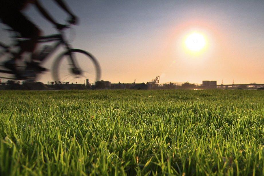 Ma très chère pelouse... (Photo: fournie par Explora)