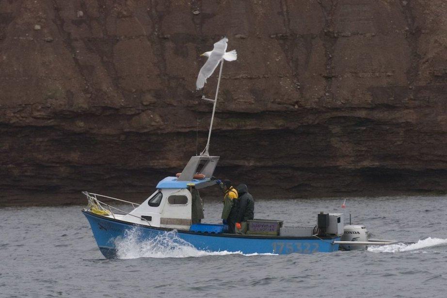 Ouverte depuis le 20 avril en Gaspésie, la... (Photo archives La Presse)