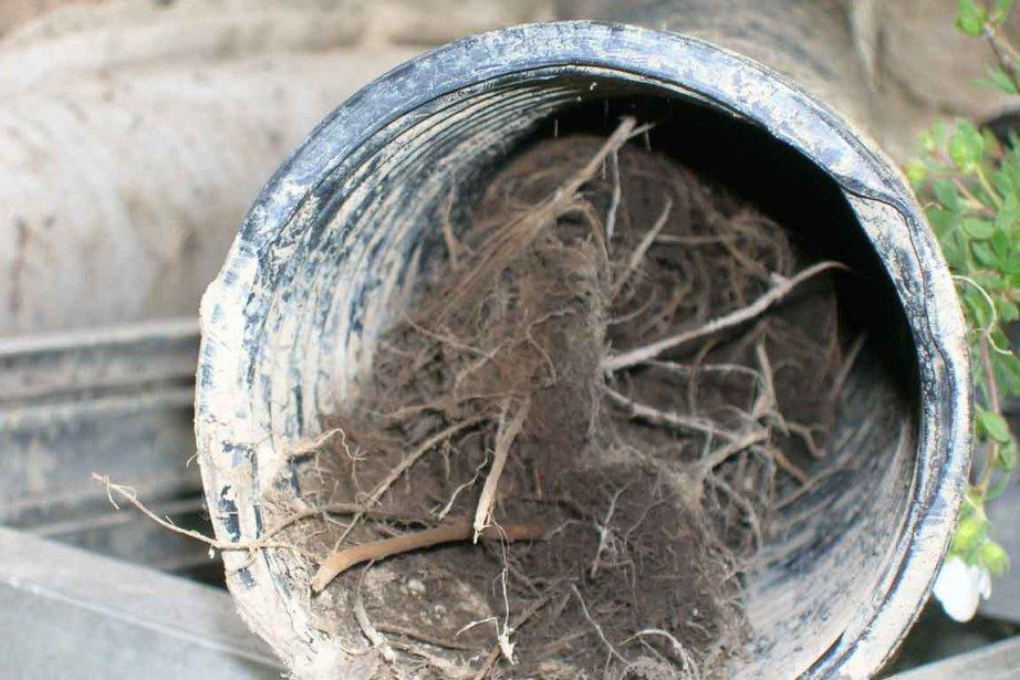 Les probl mes de drain c 39 est du s rieux mich le - Infiltration sous sol maison ...