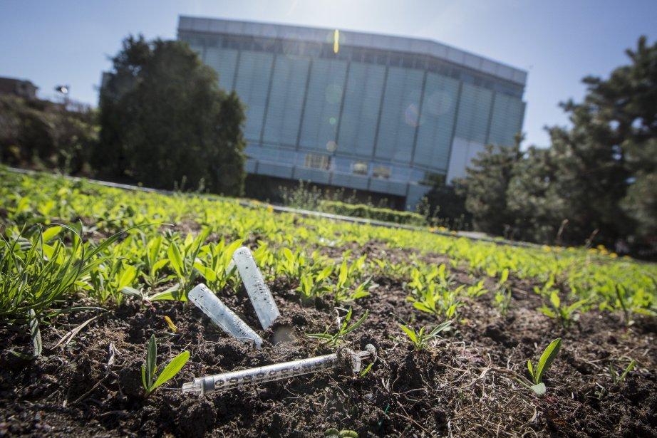 Des seringues utilisées reposent dans le jardin attenant... (Photo Édouard Plante-Fréchette, La Presse)