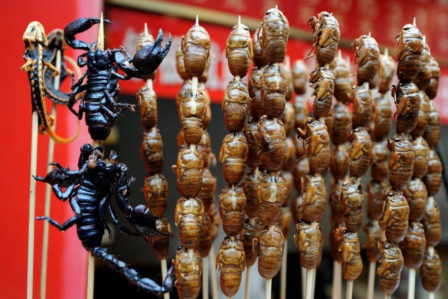 La consommation d'insectes, qui porte le nom savant... (PHOTO Mark RALSTON, AFP)
