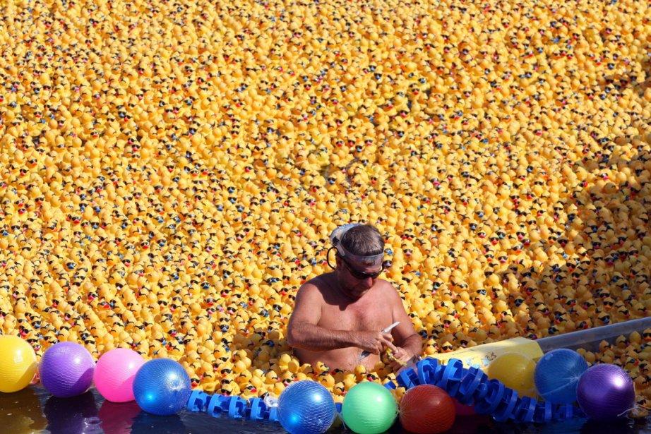 Une flottille de 12 000 canards en plastique... (Photo Elizabeth Ruiz, AFP)