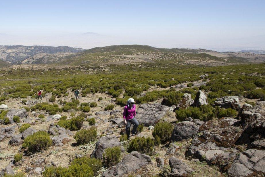 Les derniers mètres menant à l'un des nombreux sommets explorés. (Photo fournie par Emmanuel Leroux-Nega)