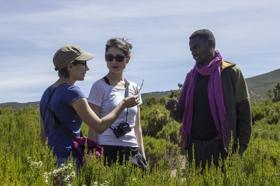 Ayano, le guide du trek, informe les touristes sur la flore luxuriante des Balé. | 23 mai 2013
