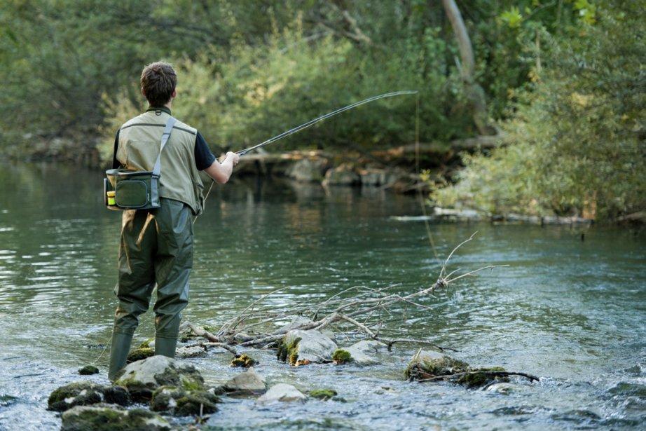Tantôt farouche, tantôt sournoise, la truite bleue exige une qualité d'eau...