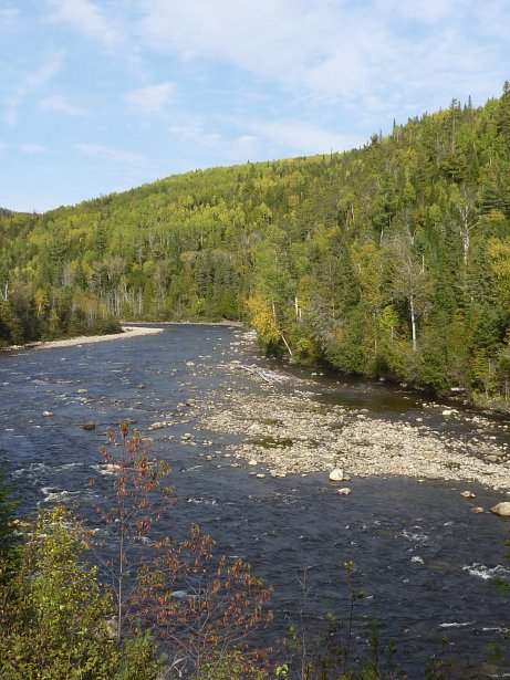 La rivière Sainte-Marguerite. (Photo Pierre Gingras, La Presse)