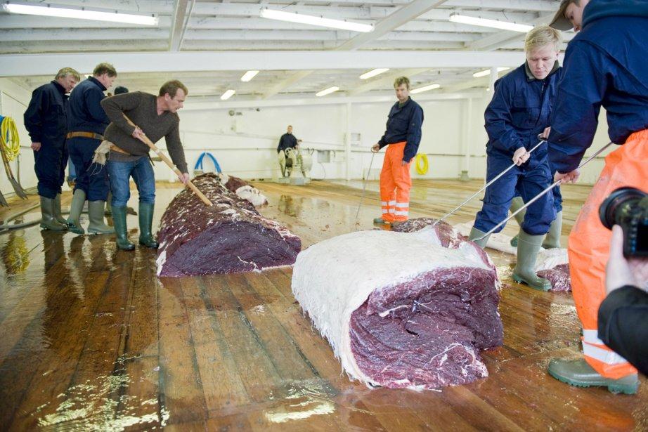 Ikan précise que la viande de baleine utilisée... (PHOTO ARCHIVES AFP)