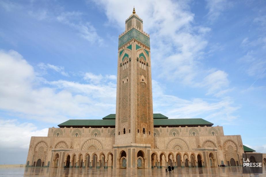 Chat maroc tanger
