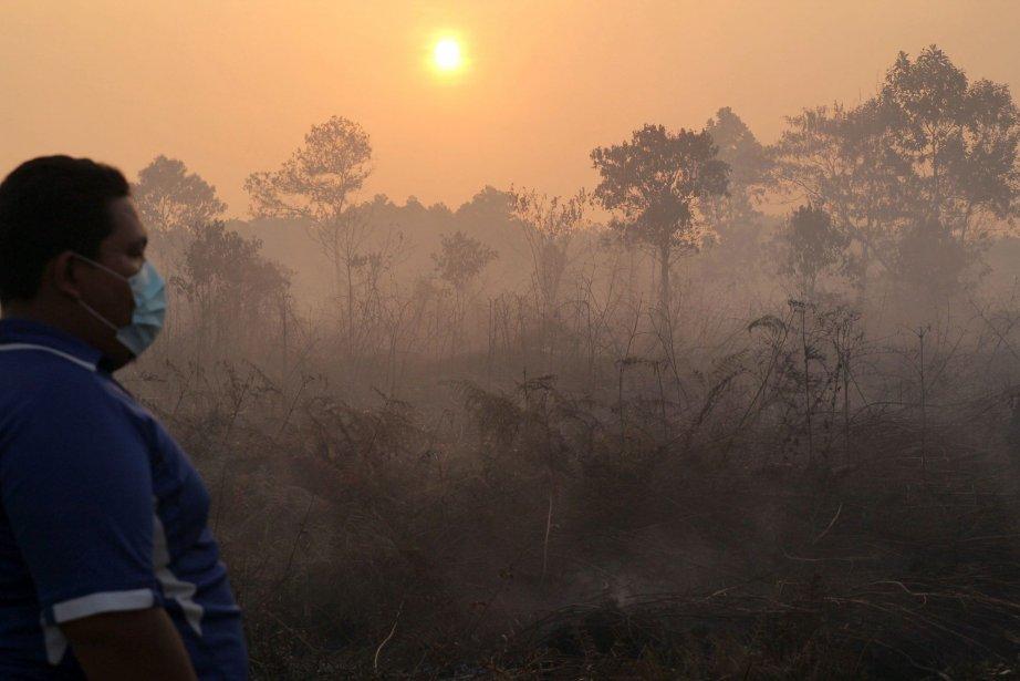 Les incendies ont provoqué un nuage de fumée... (PHOTO Rony Muharrman, AP)