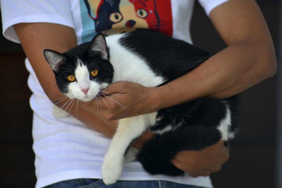 Morris, que l'on voit dans les bras de... (Photo Oscar Martinez, Reuters)