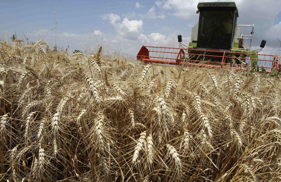 Paris veut protéger une certaine «idée» de l'agriculture.... (Photo DAVID MDZINARISHVILI, REUTERS)