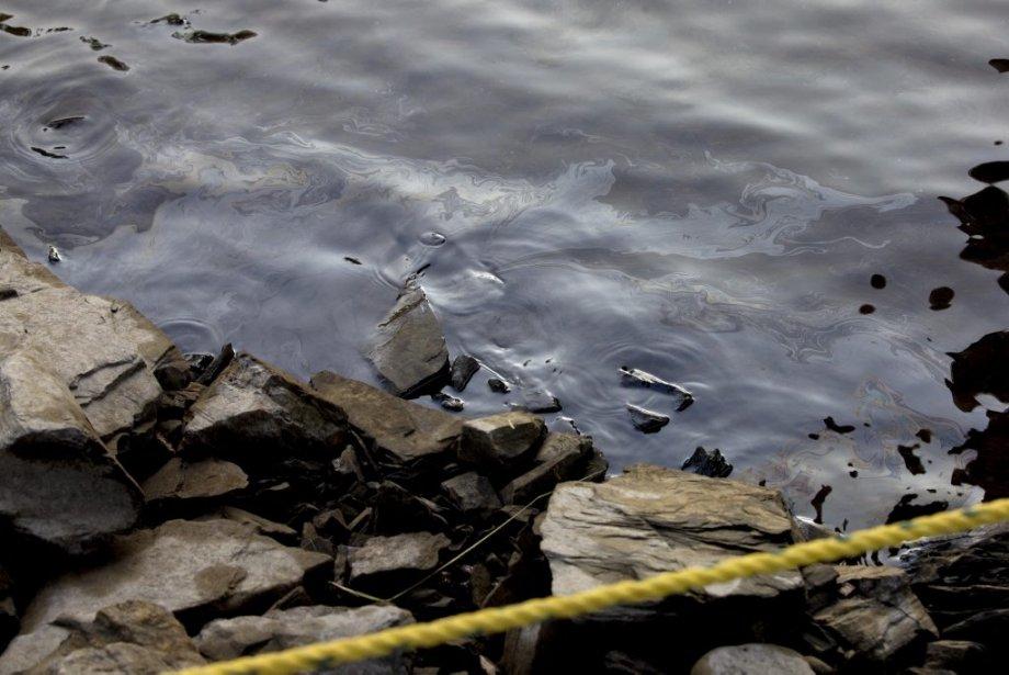 Des contaminants flotte sur la surface de l'eau de la rivière Chaudière. | 11 juillet 2013