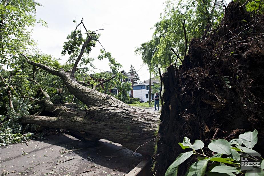 Les tempêtes sont plus sévères et plus nombreuses... (Photo Anne Gauthier, La Presse)