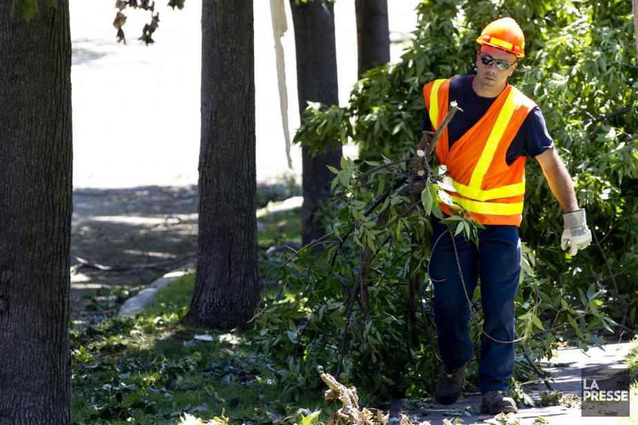 Un employé d'Hydro-Québec durant les travaux de nettoyage.... (Photo Olivier Jean, La Presse)