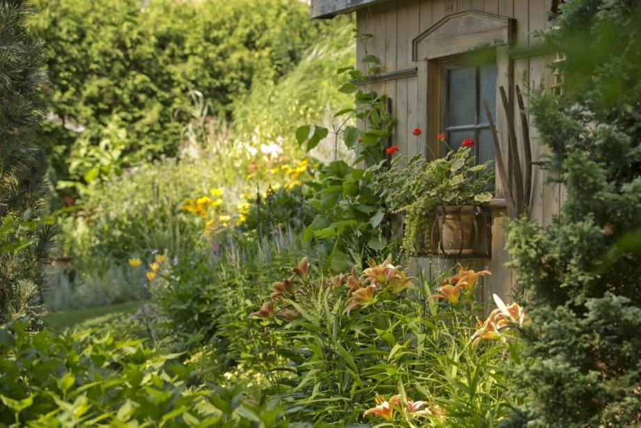 Le jardin des merveilles pierre gingras jardiner for Le jardin des merveilles streaming