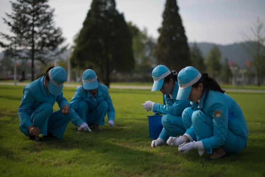 Les jardiniers à l'oeuvre au Palais du Soleil... (Photo Ed Jones, AFP)