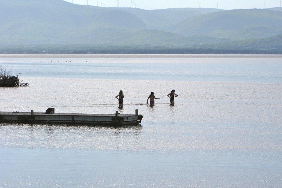 Le kayakiste était parti dans la Baie-des-Chaleurs.... (Photo Michel Samson, Le Soleil)