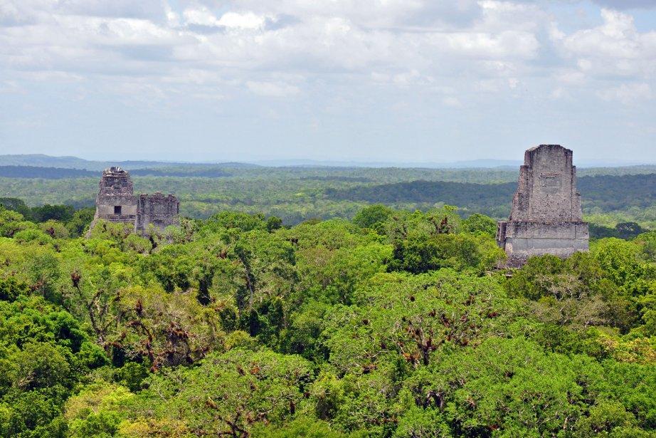 Une frise maya «extraordinaire»... (Photo Brenda Linskey, Shutterstock.com)