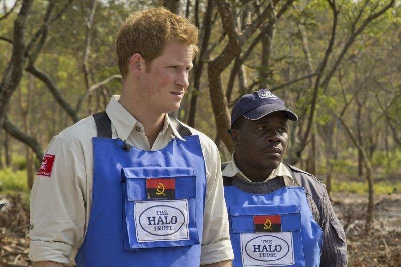 Le prince Harry visite un champ de mines... (Photo HALO Trust, AP)