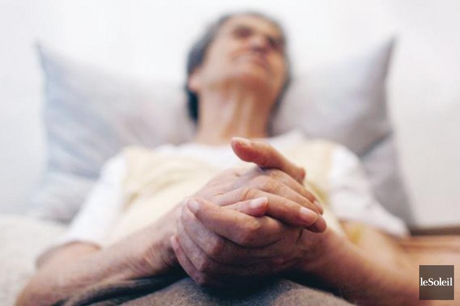 Le nombre d'euthanasies pratiquées augmente rapidement dans tous... (PHOTOTHÈQUE LE SOLEIL)