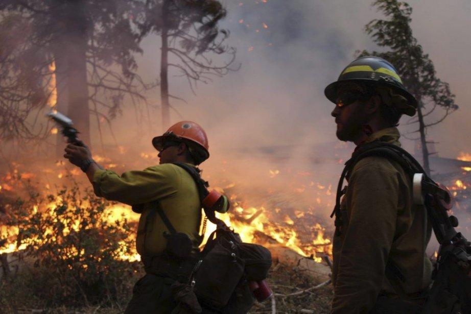 Les pompiers observent une zone où le feu... (Photo Mike McMillan, service des forêts américaines/AP)