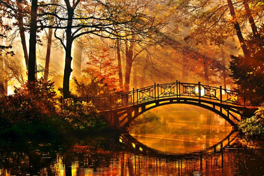 Les feuillages d'automne visibles dans certaines... (Photo shutterstock.com)