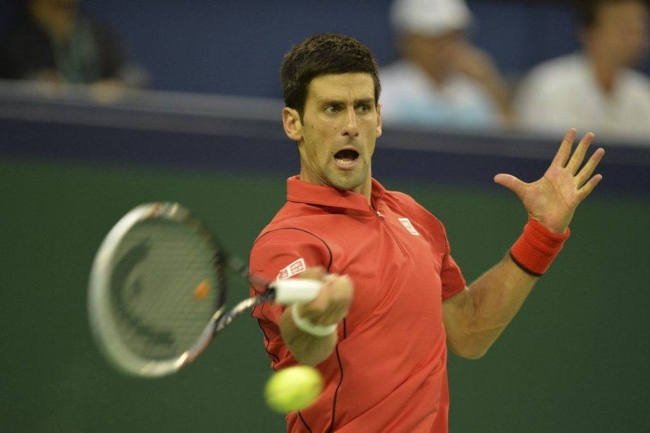 Novak Djokovic a battu Juan Martin Del Potro... (PHOTO PETER PARKS, AFP)