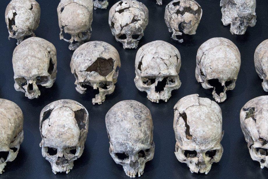 L'Italien qui possédait les crânes a été arrêté... (Photo Jens Meyer, AP)