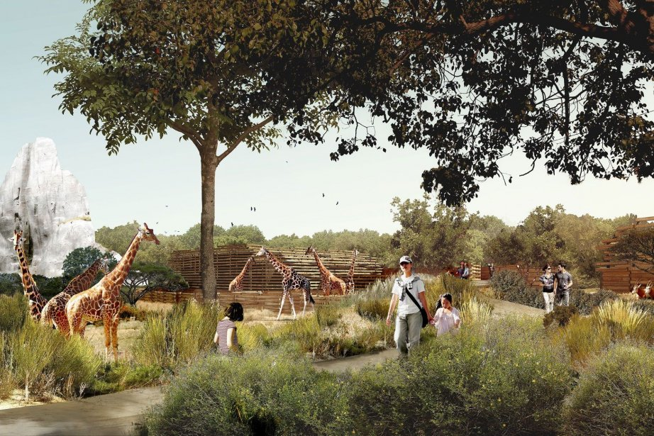 Le parc zoologique de Paris rouvrira ses portes... (Illustration fournie par Muséum national d'Histoire naturelle, RelaxNews)