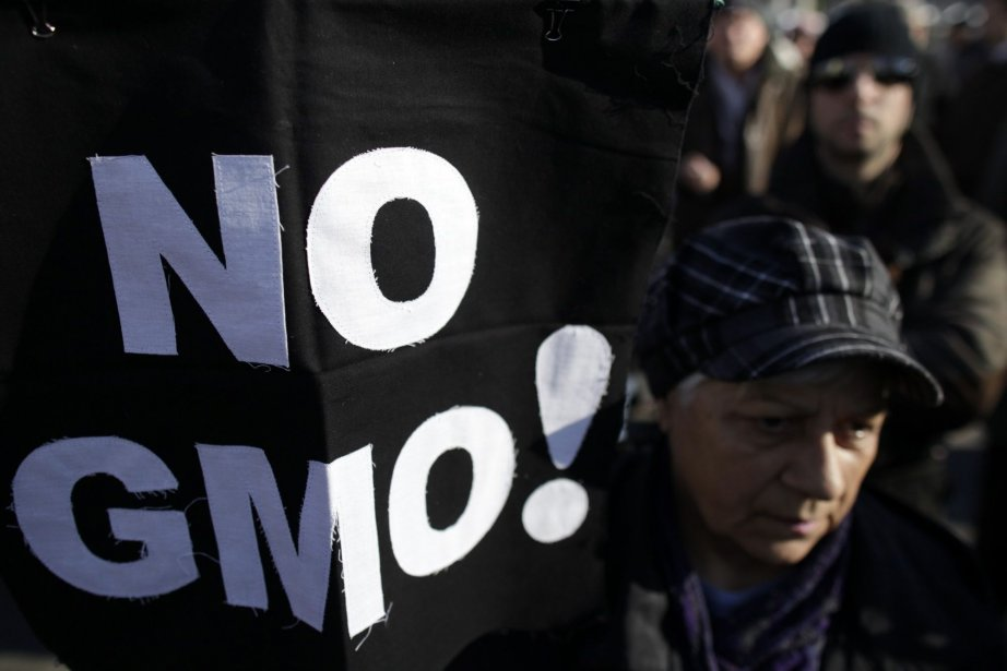 Une manifestation contres les OGM (Genetically modified organism... (Photo Darko Vojinovic, Archives AP)