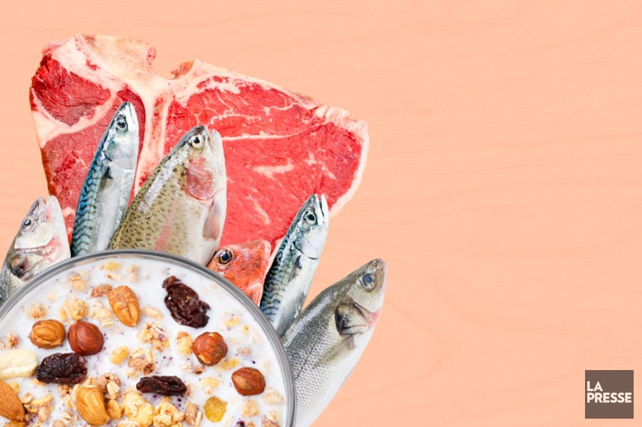 avis sur le régime alimentaire alevere