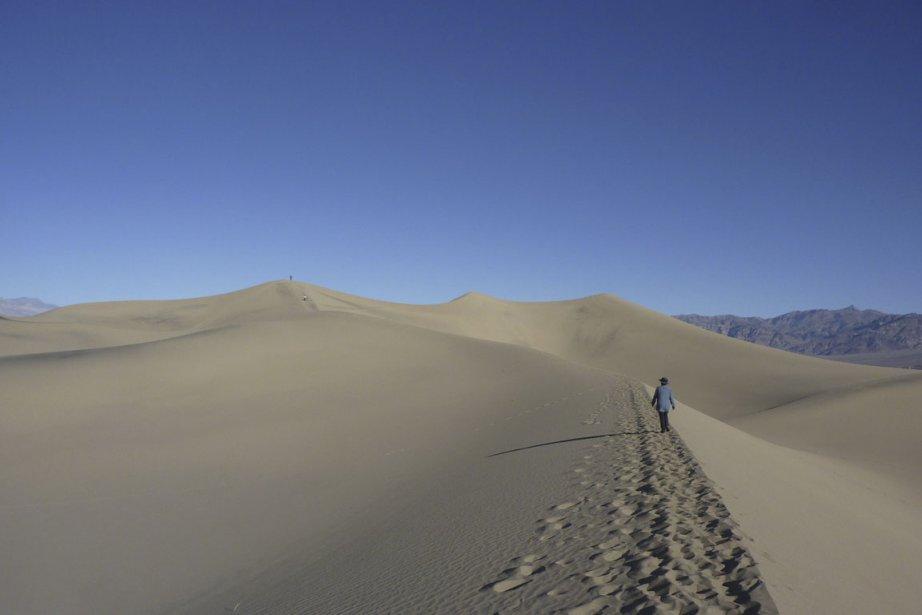 Les dunes de Mesquite n'ont qu'une quarantaine de mètres de hauteur, mais on dirait parfois des montagnes. (Photo Pierre Gingras, La Presse)