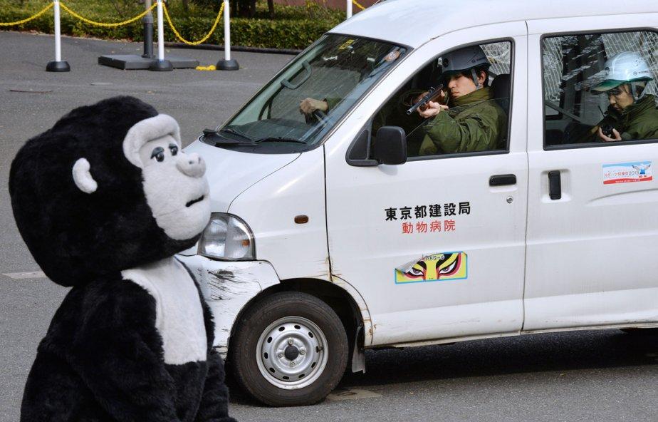(KAZUHIRO NOGI, AFP)